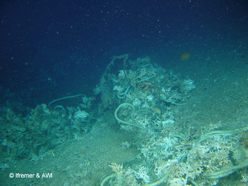 Discarded rope and fishing gear lies among crushed cold-water corals, Porcupine Seabight