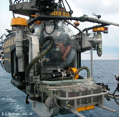 Johnson Sea Link Submersible